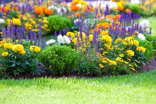 img_garden_540x360