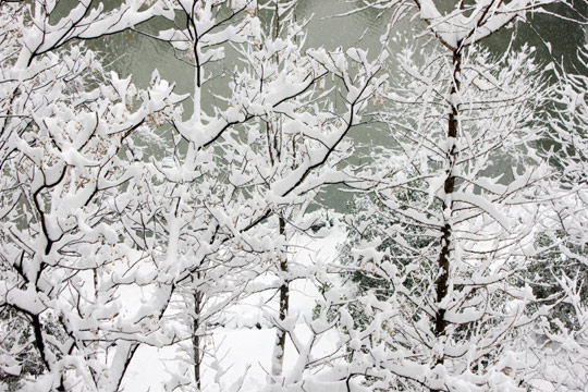 img_winterStorm_540x360